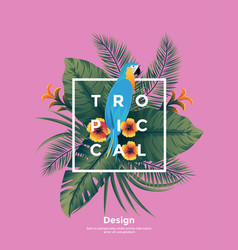tropical bakground with frame vector image