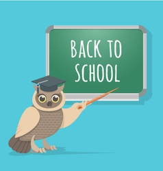 wise owl at school board vector image