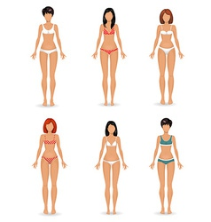 collection Female body template vector image