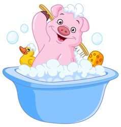 pig taking a bath vector image vector image