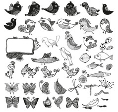 Birds and Butterly vector image vector image