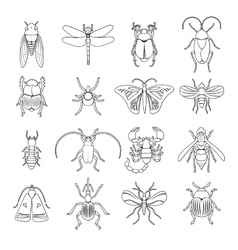 Outline Insects Icons Set vector image vector image