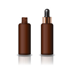 brown clear cosmetic round bottle with dropper lid vector image