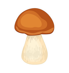 Cartoon porcini mushroom isolated on white vector