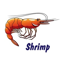 Cartoon shrimp icon or emblem vector
