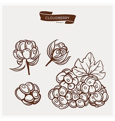 CLOUDBERRY drawing set vector image