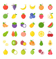 cute fruit flat icon set such as orange kiwi vector image