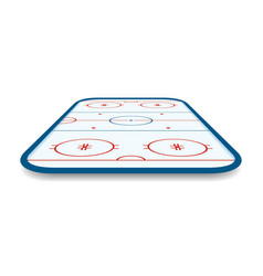 detailed of a icehockey rink field court with vector image