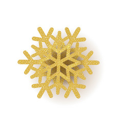 gold snowflake with white background vector image