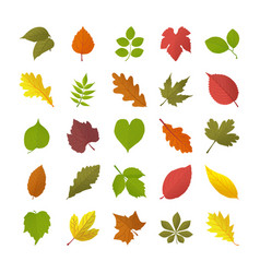 Autumn leaves flat icons vector