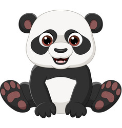 cute little panda sitting isolated vector image