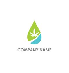 droplet cannabis oil bio logo vector image