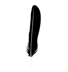 feather isolated vector image