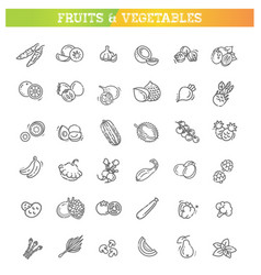 fresh fruit and vegetables thin line flat design vector image