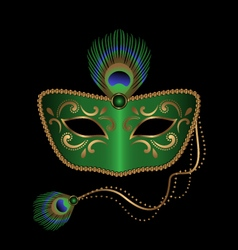 mask with peacock feather vector image