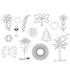 set floral and natural theme vector image