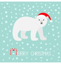 Arctic polar bear cub Red Santa hat Cute cartoon vector