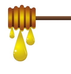 Drop of honey on a white background vector image