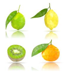 Fruits lime lemon clementine kiwi polygonal vector
