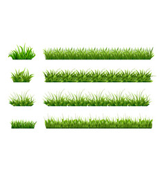 green grass border landscaped lawns meadows vector image