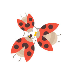happy ladybug family father mother and their vector image