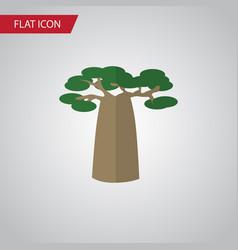 Isolated decoration tree flat icon baobab vector