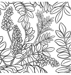 licorice seamless pattern vector image