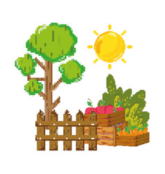 pixelated tree and wood grillage with farm plants vector image