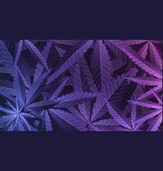 Purple leafs cannabis plant wallpaper vector