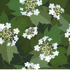 Seamless background from blossoming viburnum vector image