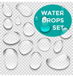 Water drops realistic set vector image