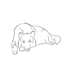 wolf lies lines vector image