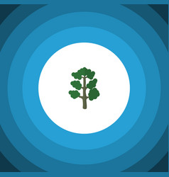 isolated wood flat icon forest element can vector image vector image