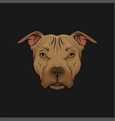 head of bulldog face of pet animal hand drawn vector image