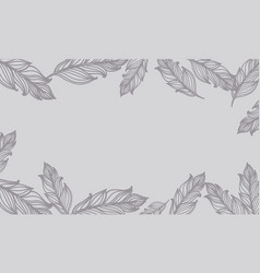 Cute background with feathers card design vector