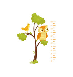 kids height chart and birds sitting on branches of vector image