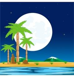 Night in tropic vector image