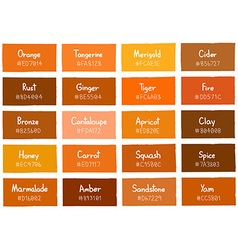 Orange Tone Color Shade Background with Code vector