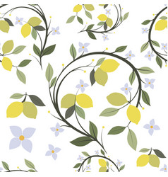 pattern of lemon branch tree with flowers and vector image