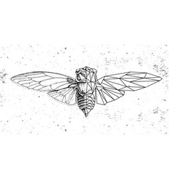 realistic and polygonal cicada zodiac sign vector image