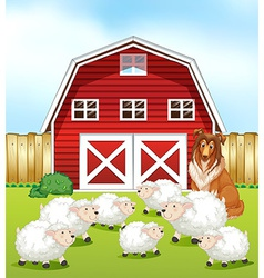 Sheep and barn vector