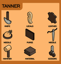 tanner color isometric icons vector image