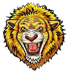 Cartoon head angry lion mascot vector image vector image