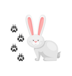 cute little bunny and his footprints tracks vector image
