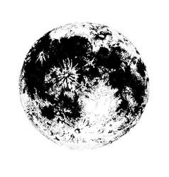 moon isolated on white background elegant drawing vector image