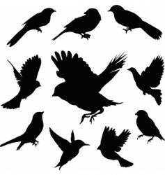 set birds vector vector image vector image