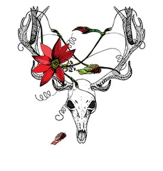 Deer Skull and passiflora vector image vector image