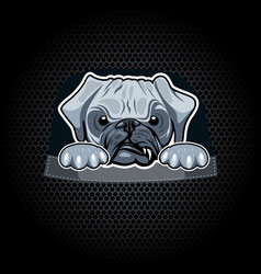 Angry pug in pocket t-shirt template vector