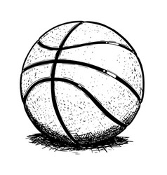 Basketball ball hand drawing vector