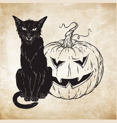 black cat sitting with halloween pumpkin over old vector image